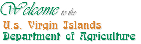 Department of agriculture welcome to us virgin island department of agriculture sciox Choice Image